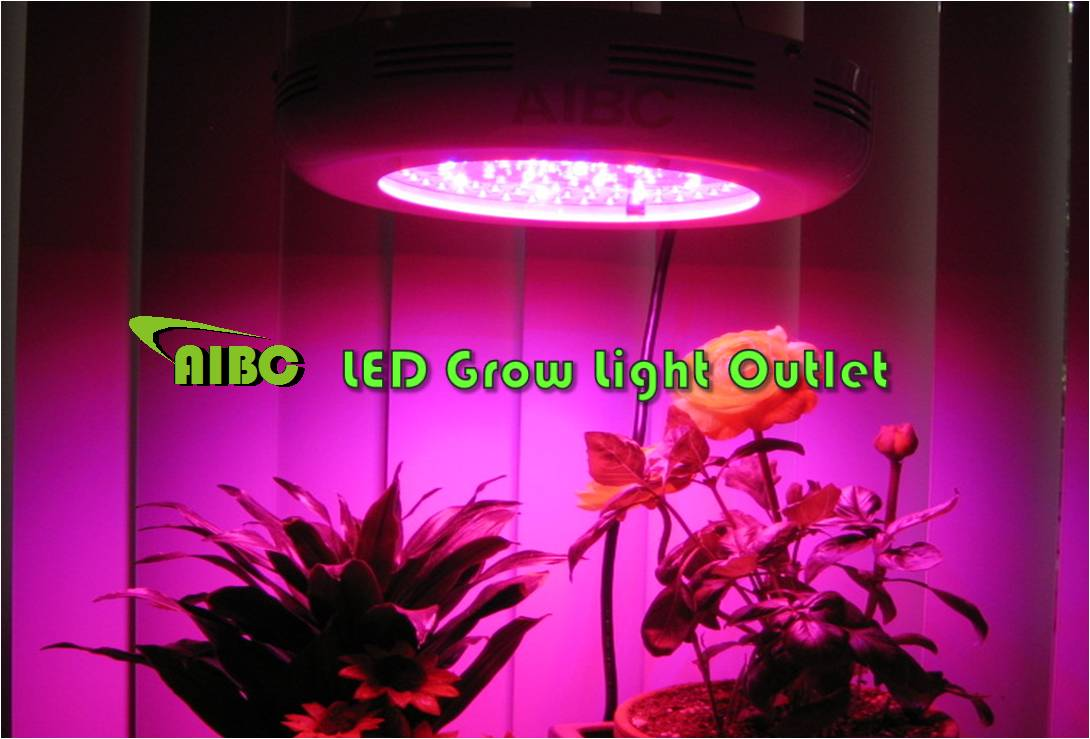 90w led grow light wholesale