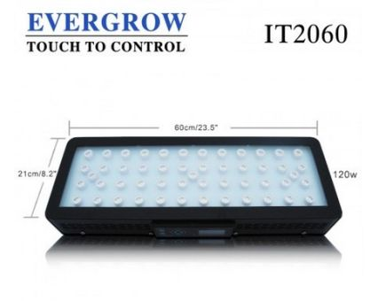 evergrow-IT2060