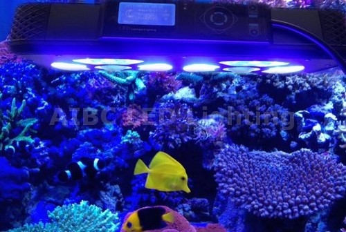 led aquarium lights