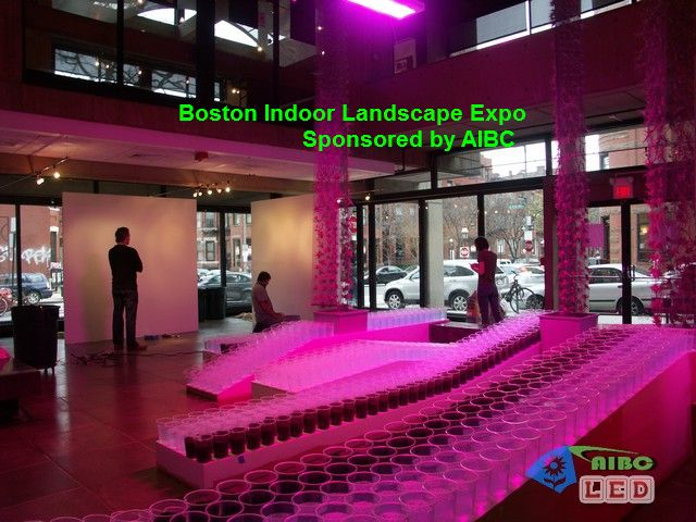 boston-expo
