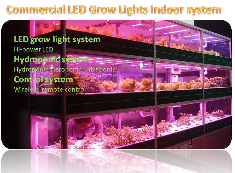 commerical led grow system