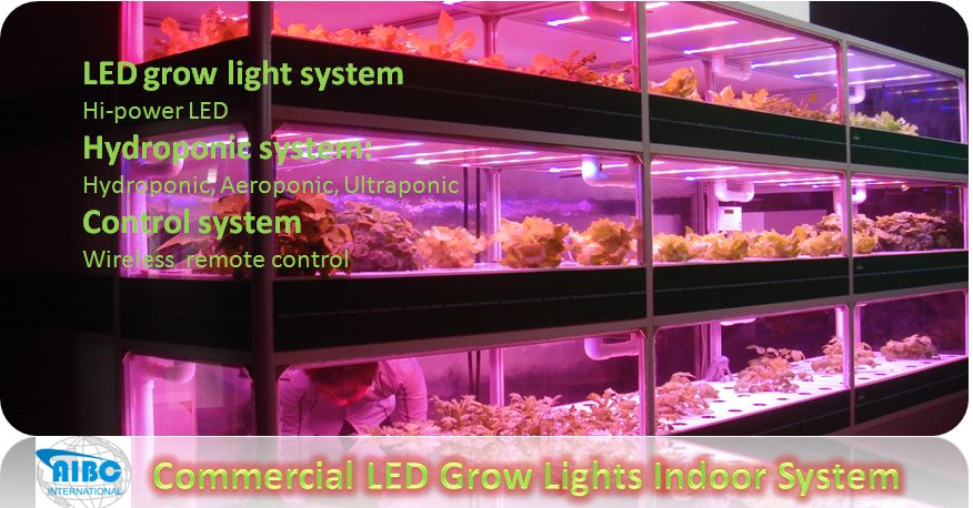 http://www.ledgrowlightsoutlet.com/commerial-a-industrial-led-grow